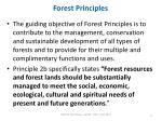forest principles