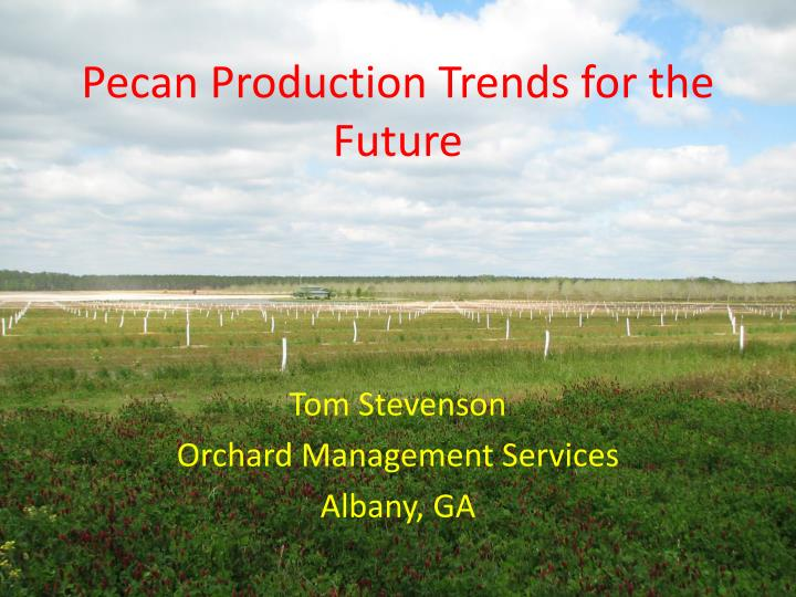 pecan production trends for the future n.