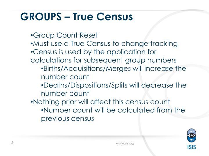 GROUPS – True Census