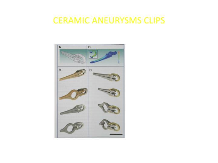 CERAMIC ANEURYSMS CLIPS