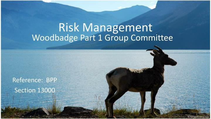 risk management n.