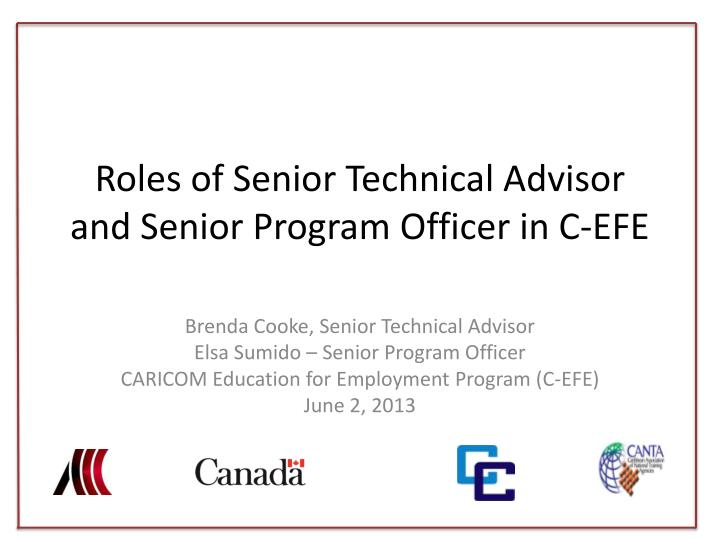 roles of senior technical advisor and senior program officer in c efe n.