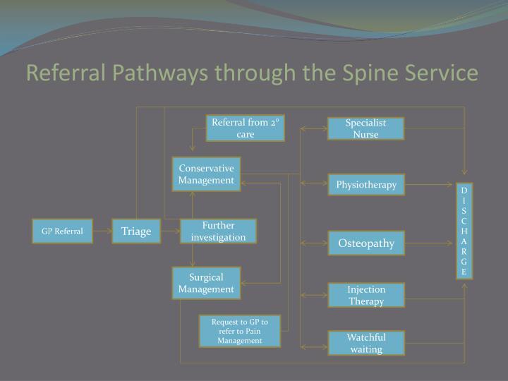 Referral Pathways through the Spine Service