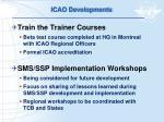 icao developments