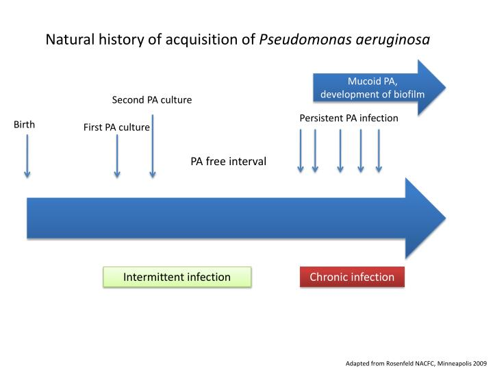 Natural history of acquisition of