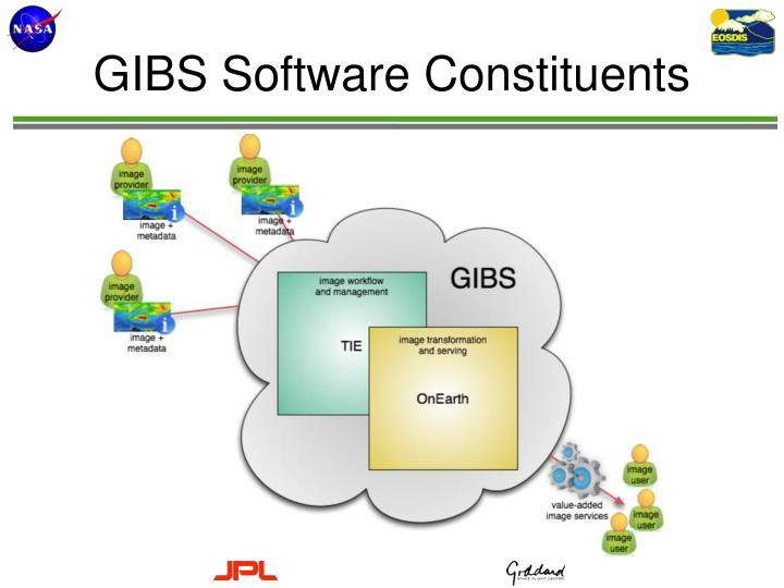GIBS Software