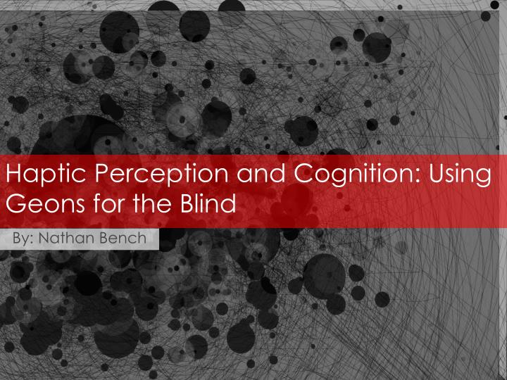 haptic perception and cognition using geons for the blind n.