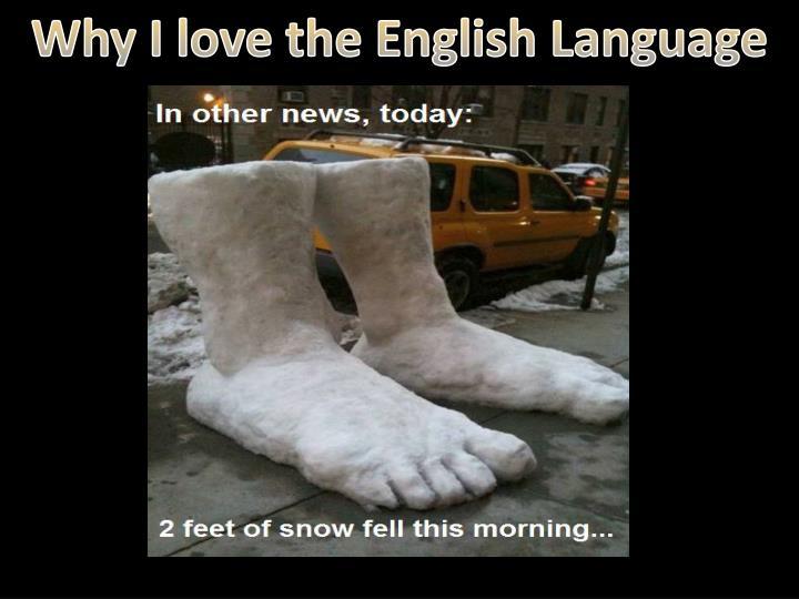 Why I love the English Language