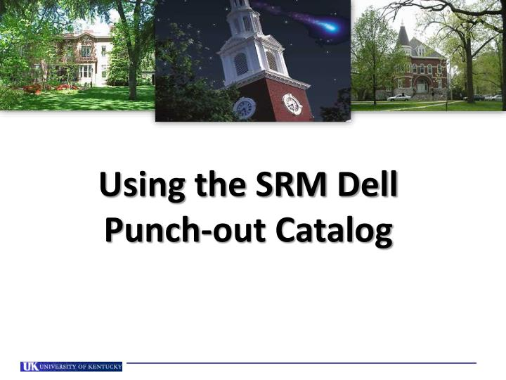 Using the srm dell punch out catalog