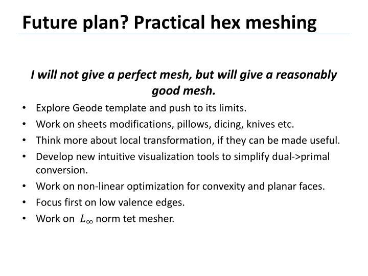 Future plan? Practical hex meshing