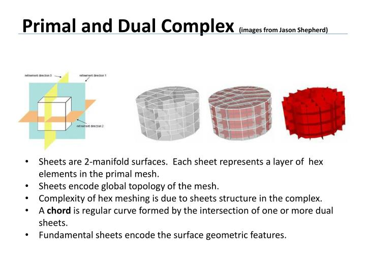 Primal and Dual Complex