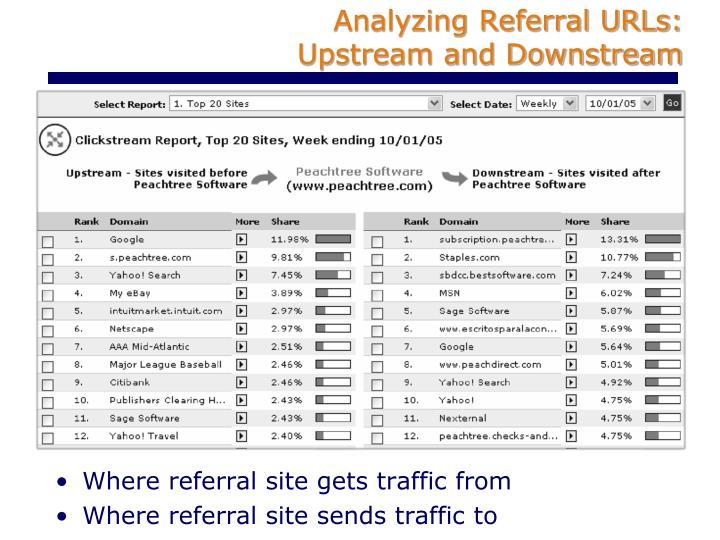 Analyzing Referral URLs: