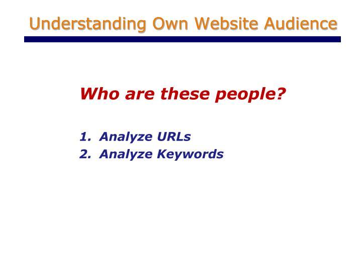 Understanding own website audience