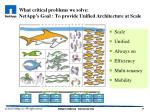 what critical problems we solve netapp s goal to provide unified architecture at scale