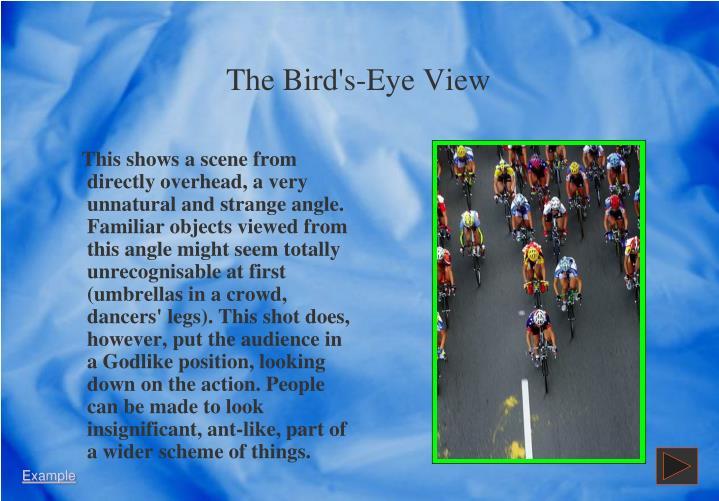 The Bird's-Eye View