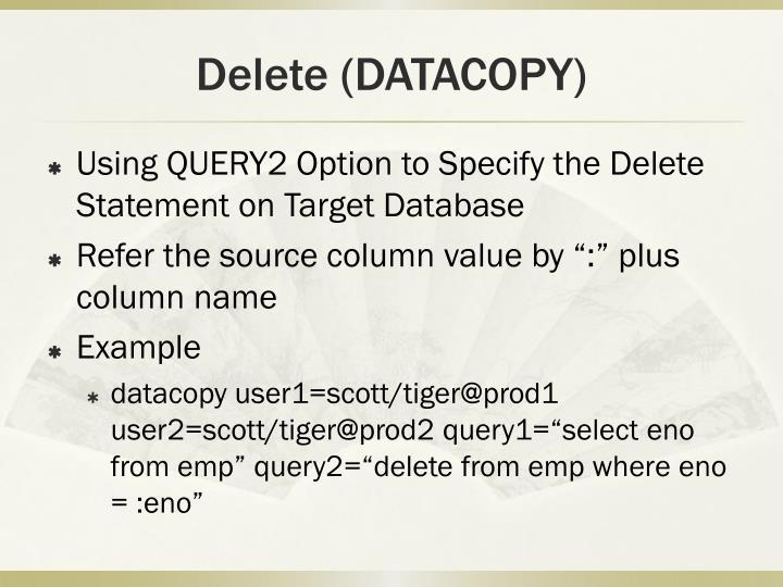 Delete (DATACOPY)