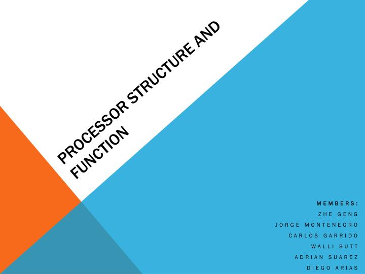 Processor structure and function
