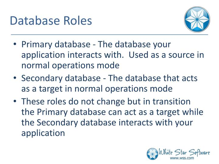 Database Roles