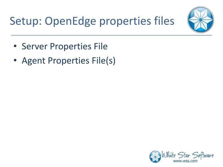 Setup: OpenEdge properties files