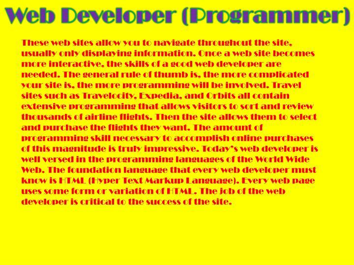 Web Developer (Programmer)