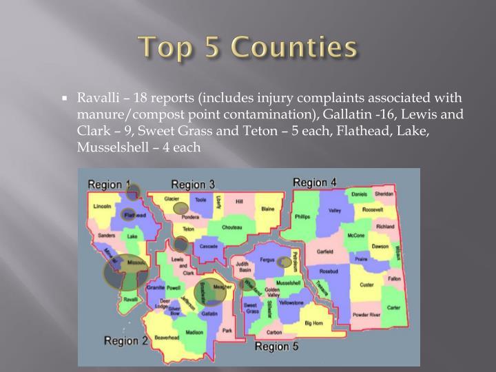 Top 5 Counties