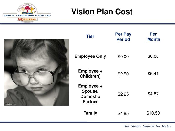 Vision Plan Cost