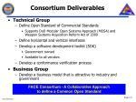 consortium deliverables