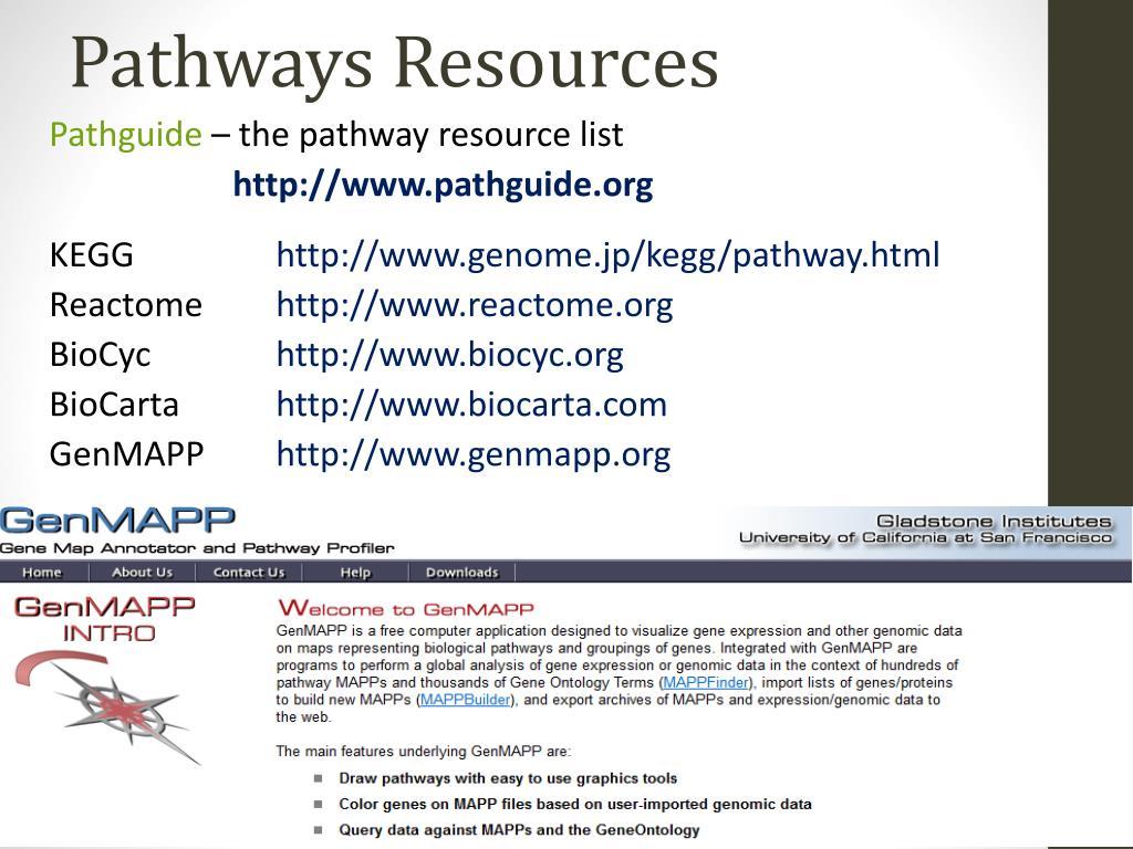 PPT - Pathways & Networks analysis PowerPoint Presentation - ID:1581201