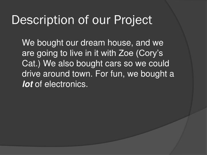 Description of our project