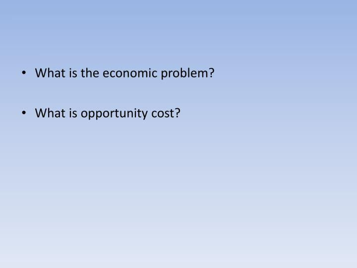 What is the economic problem?