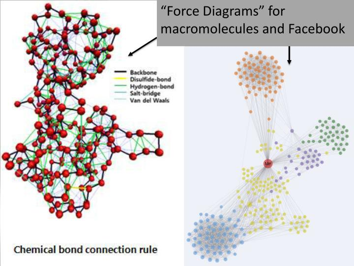 """Force Diagrams"" for macromolecules and Facebook"