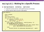 waitpid waiting for a specific process