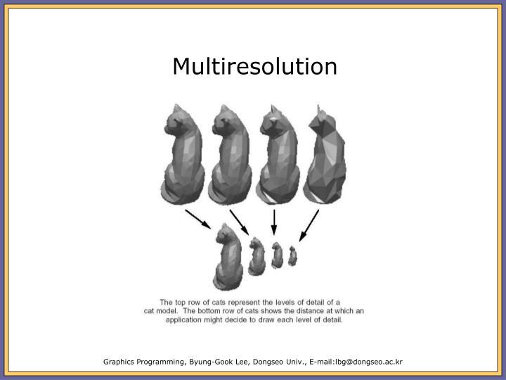 Multiresolution