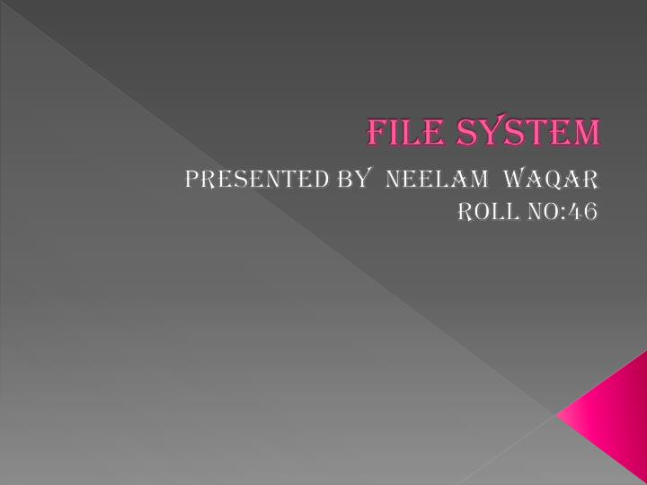 file system n.