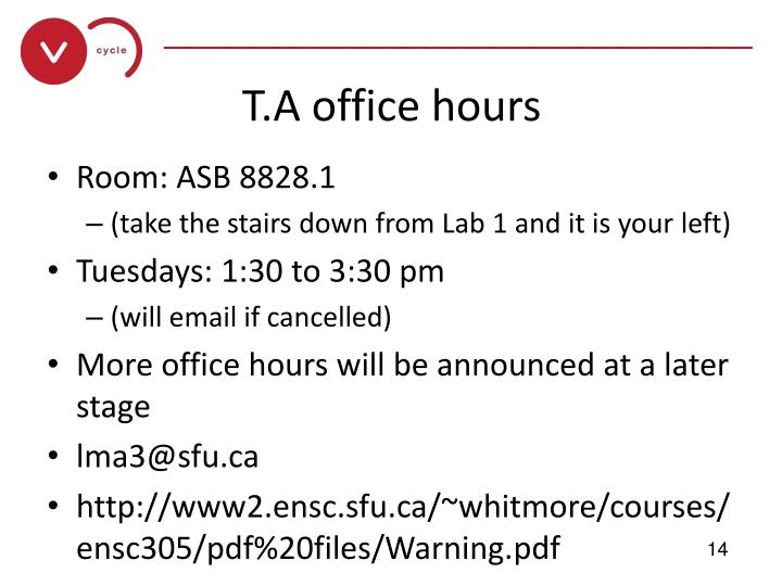 T.A office hours