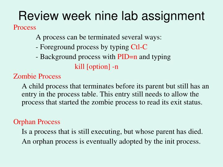 Review week nine lab assignment