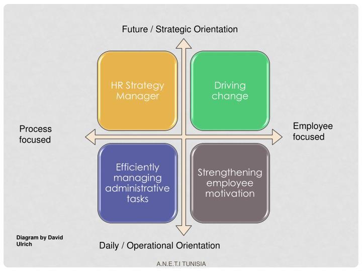 Future / Strategic Orientation