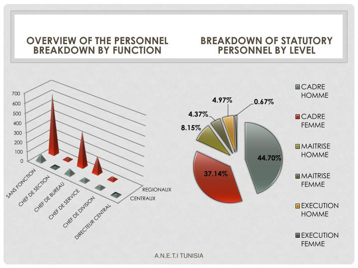 OVERVIEW OF THE PERSONNEL BREAKDOWN BY FUNCTION