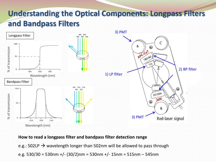 Understanding the Optical Components: