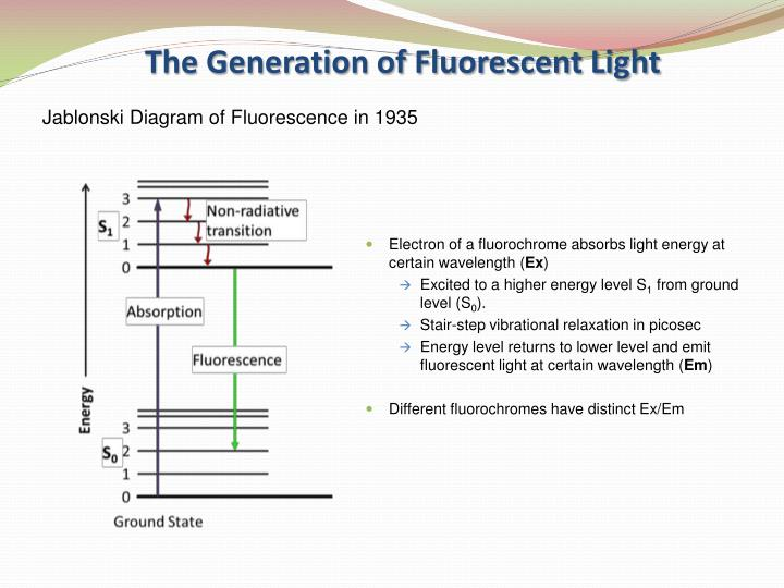 The Generation of Fluorescent Light