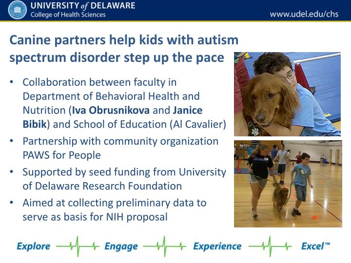 Canine partners help kids with autism