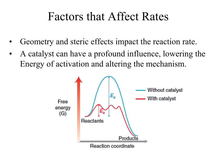 factors that affect heart rate - ethanol concentration effects:  average decrease in heart rate,no major irregularities  lesser concentration had greater decrease in heart rate open circulation dorsal heart 200 beats per minute at 20 degrees c metabolism filter feeders through filtering apparatus references ebert d ecology.