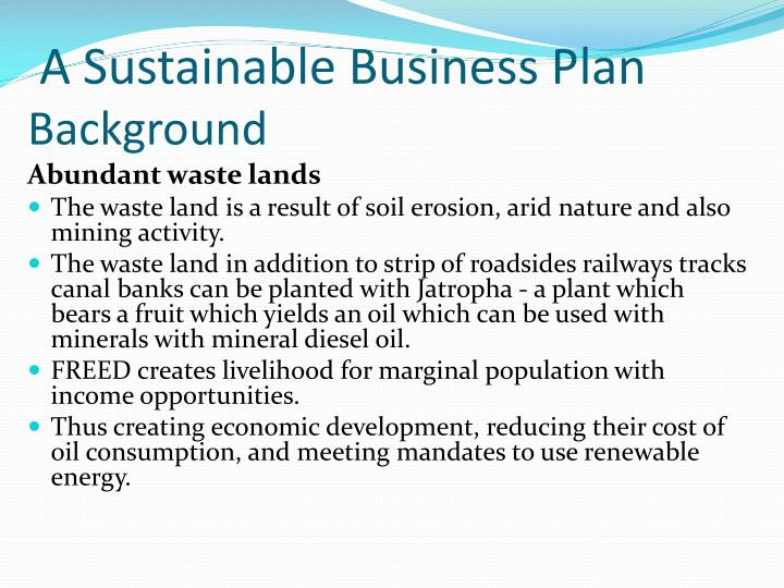 A sustainable business plan