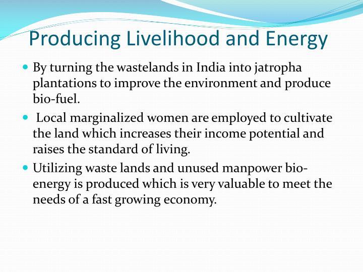 Producing Livelihood and Energy