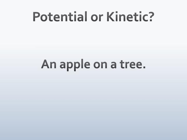 Potential or Kinetic?