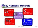key nutrient minerals