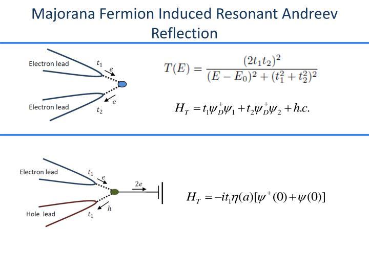 Majorana Fermion Induced