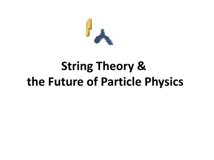 string theory the future of particle physics n.