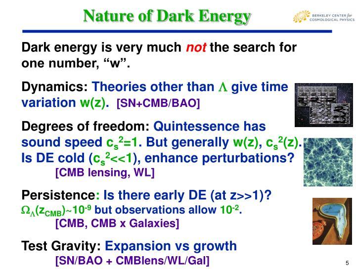 Nature of Dark Energy