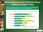 nutrient dense and non nutrient dense forms of sample foods